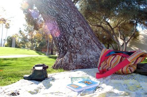 treepark2